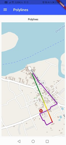 Screenshot_20210619_144658_me.jpryan.flutter_map_example